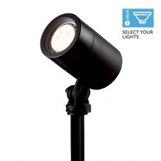 Ellumière Black Spotlight Small